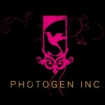 Photogen Wedding Photographer